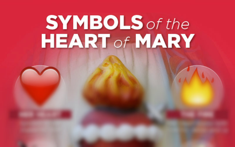 The Deep Meaning Of The 4 Symbols Of The Immaculate Heart Of Mary