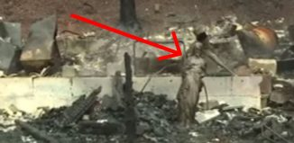 https://churchpop.com/2016/12/01/miracle-amid-destruction-wildfire-destroys-everything-jesus-statue/